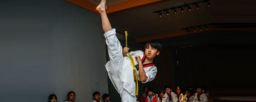 Mapplewood taekwondo sport